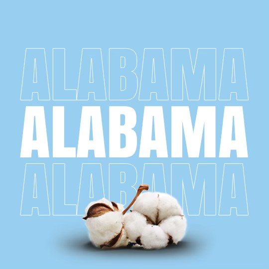 This is Why Cotton's Sweet Home is in Alabama