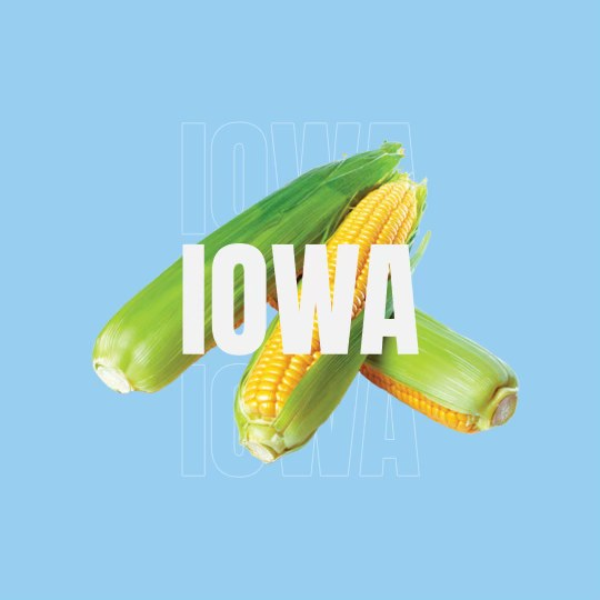 This Is Why Iowa Is Called The Corn State